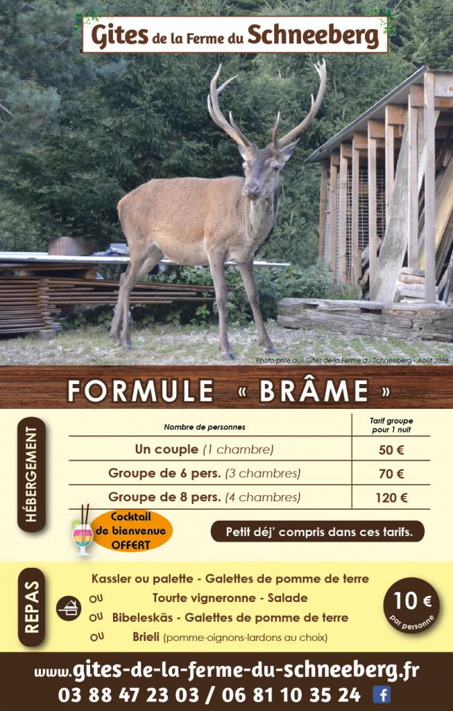 pub_brame_a5_site-01